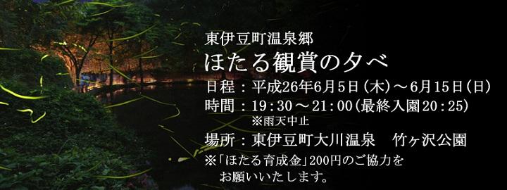 2014大川温泉ホタル観賞会.jpg