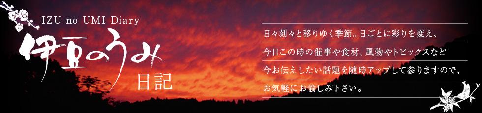 伊豆のうみ日記